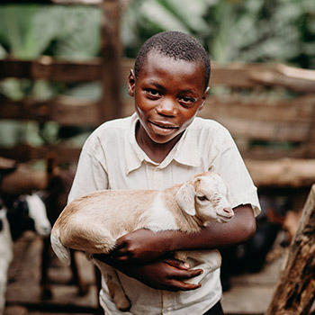 Provide a family in need a goat for income generation