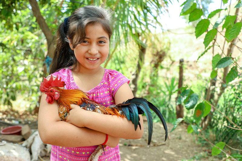 A girl holds a rooster