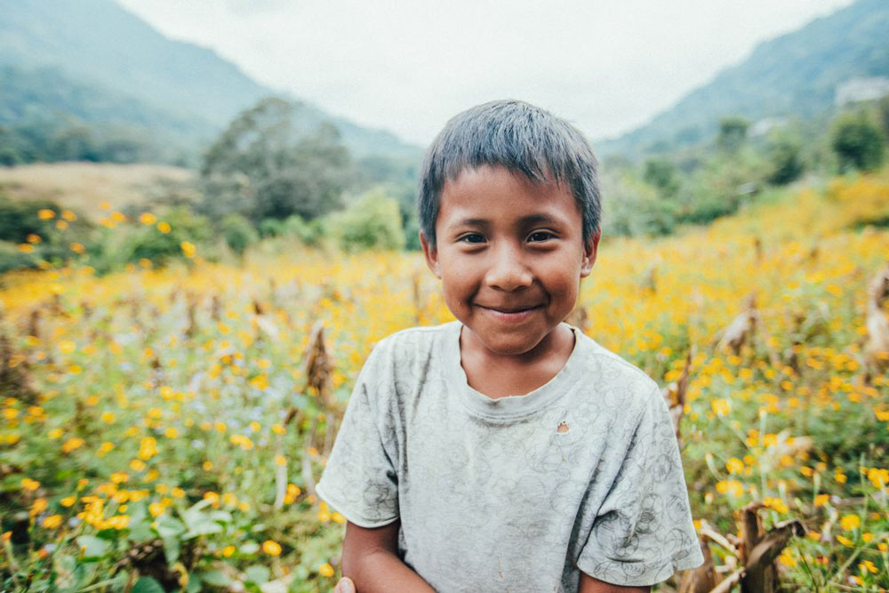 A boy smiles in a field of yellow flowers