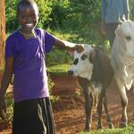 livestock-150x150.jpg