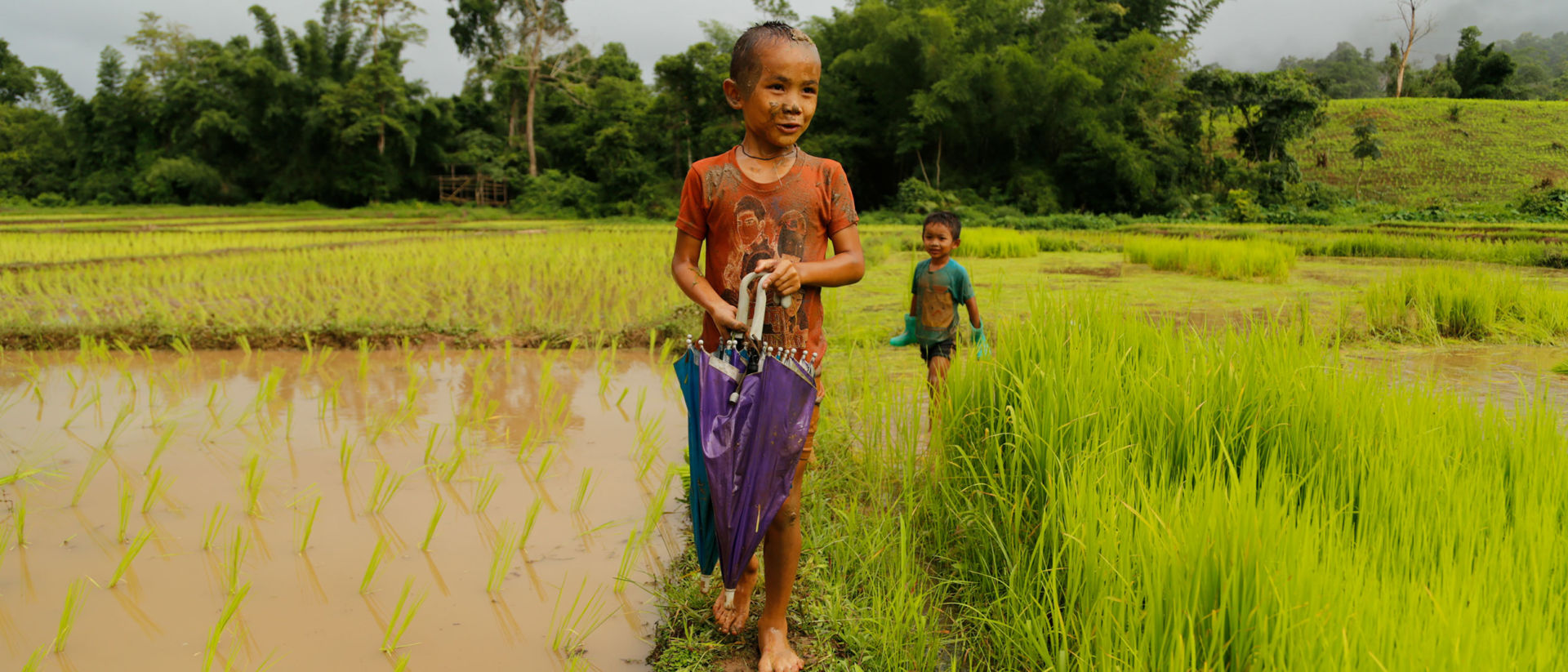 Rice fields are muddy places — even more so during rainy season, when the only road into Kotah becomes a quagmire.