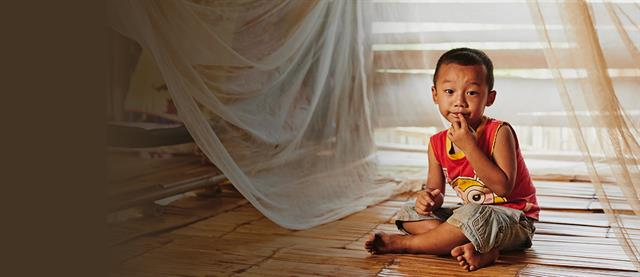 A young boy sitting under a malaria net