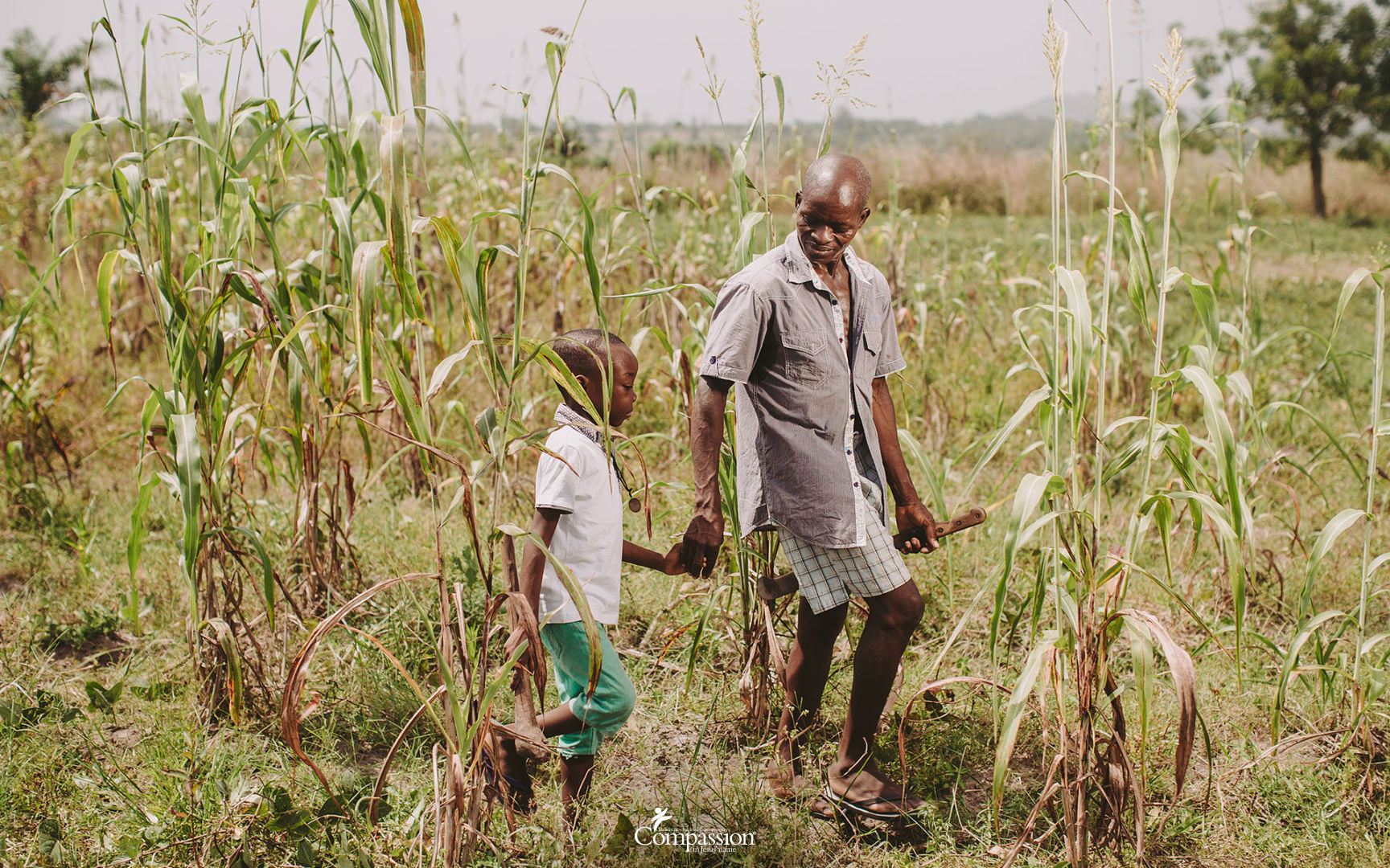 Laurent and Bamely walk through a corn field