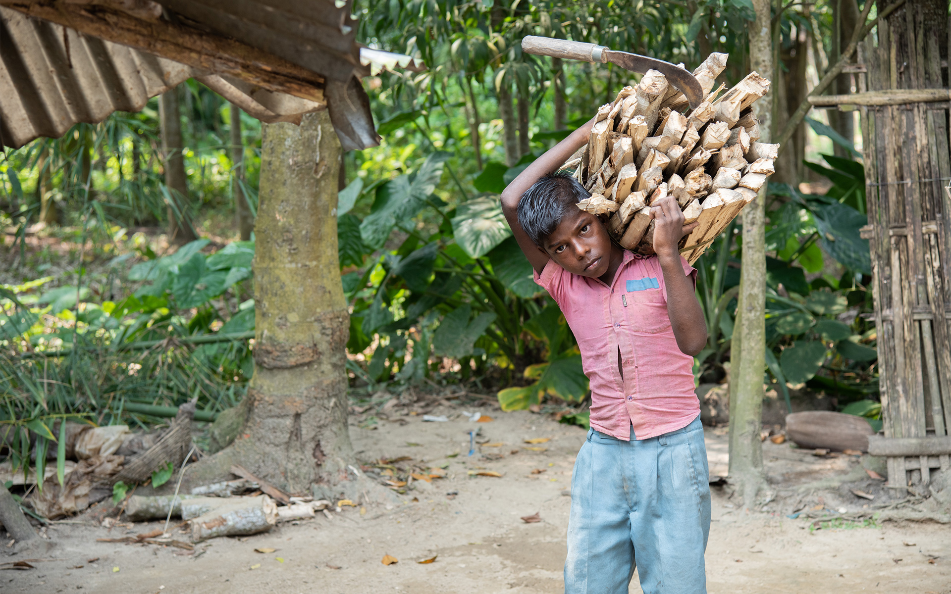 Sujit carries a load of wood
