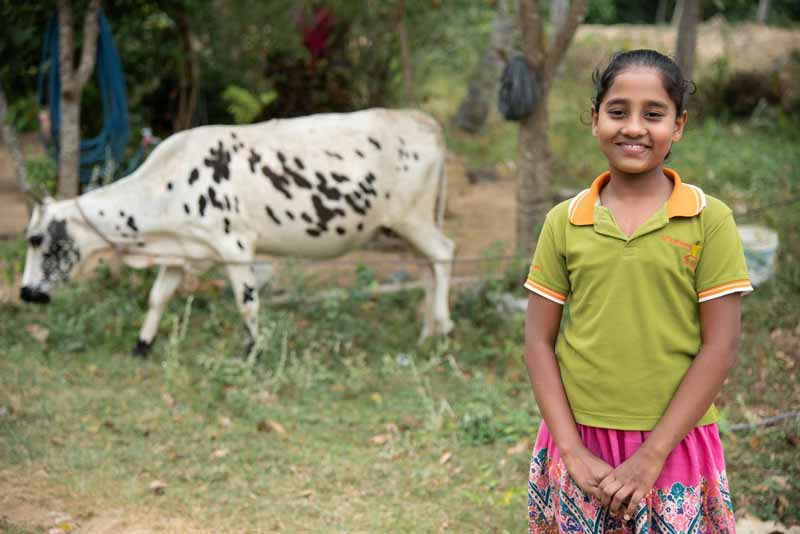 A girl standing in a field near a cow