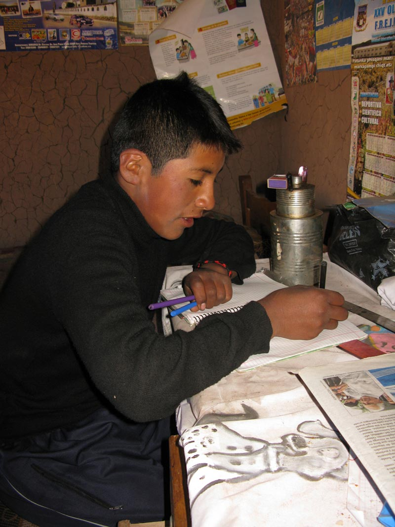 Bolivia boy studying in home