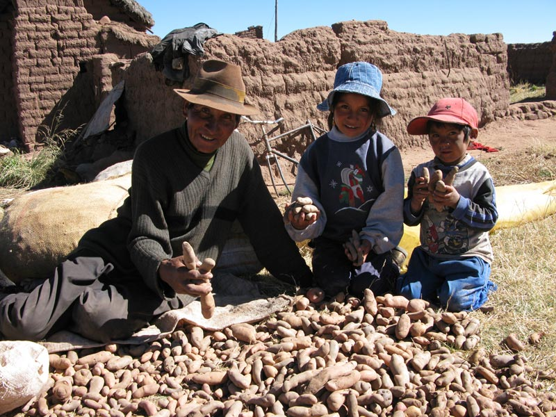Bolivia family holding potatoes