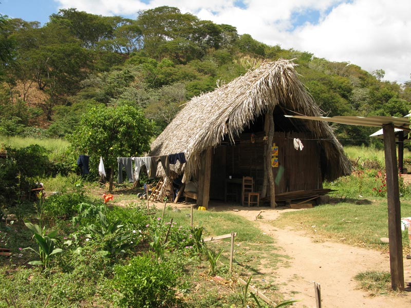 Bolivia home with thatch roof