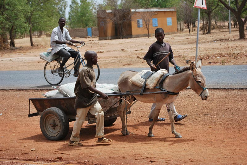 Burkina Faso Boys With Donkey Cart