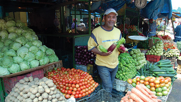 Dominican Republic Man at Produce Stand