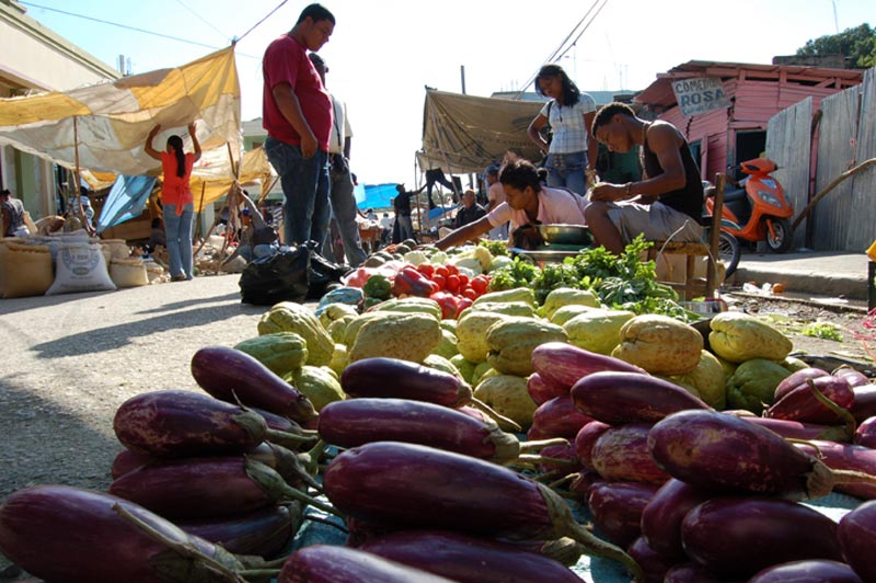 Dominican Republic Produce at the Market