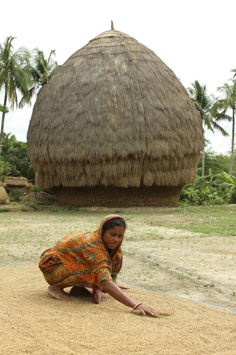 East India woman working with grain