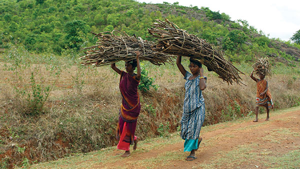 East India women carrying sticks on head