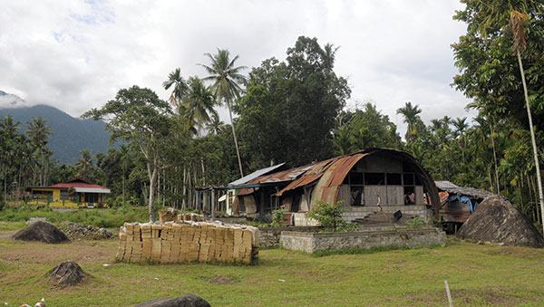 East Indonesia home in trees
