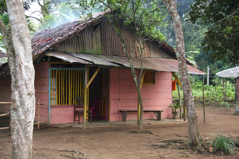 East Indonesia pink home