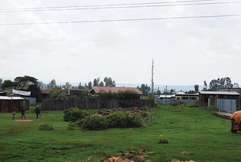 Ethiopia Green Grass with Homes