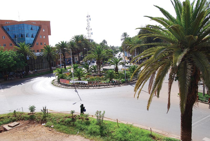 Ethiopia Intersection with Palm Trees