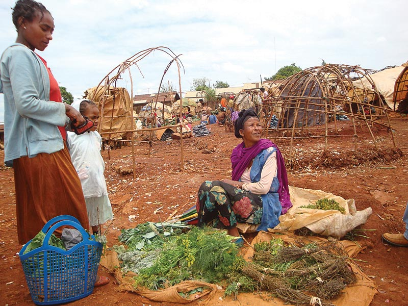 Ethiopia Woman Selling Produce