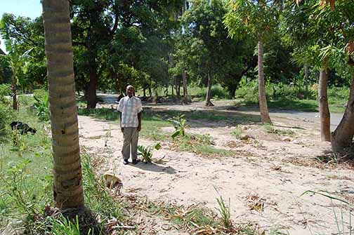 Haiti Man Standing in Dirt and Trees