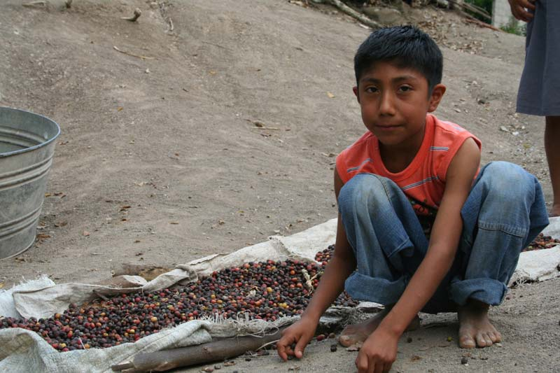 Mexico Boy With Beans