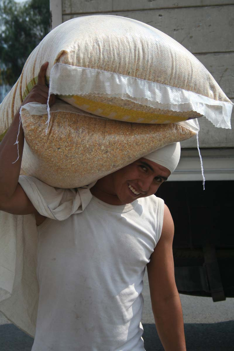 Mexico Man Carrying Bags of Grain