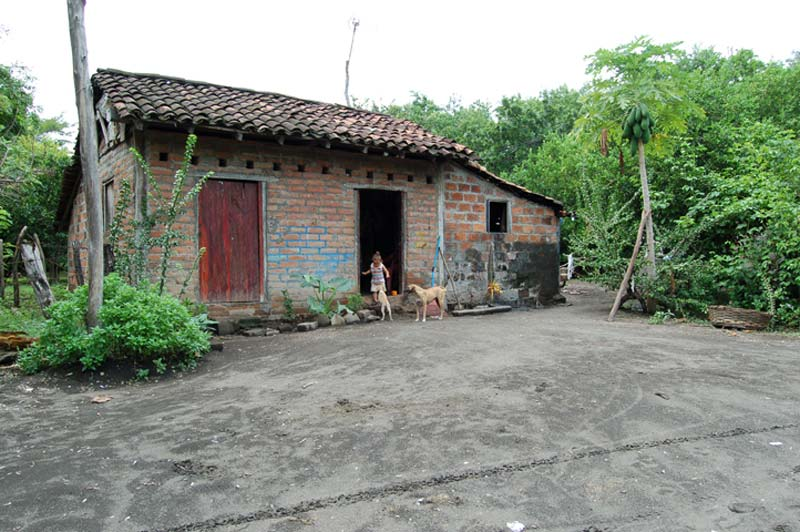 Nicaragua Girl and Dogs in a Doorway