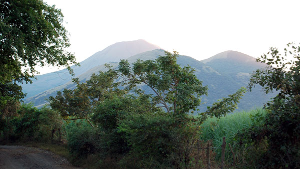 Nicaragua Trees and Mountains