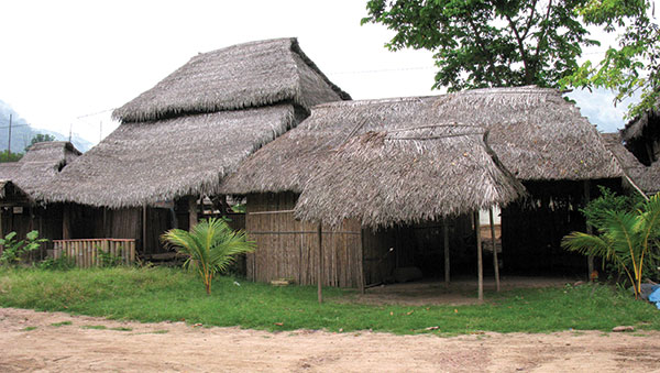 Peru Home with Thatched Roof