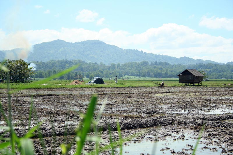 Philippines flooded field and mountains