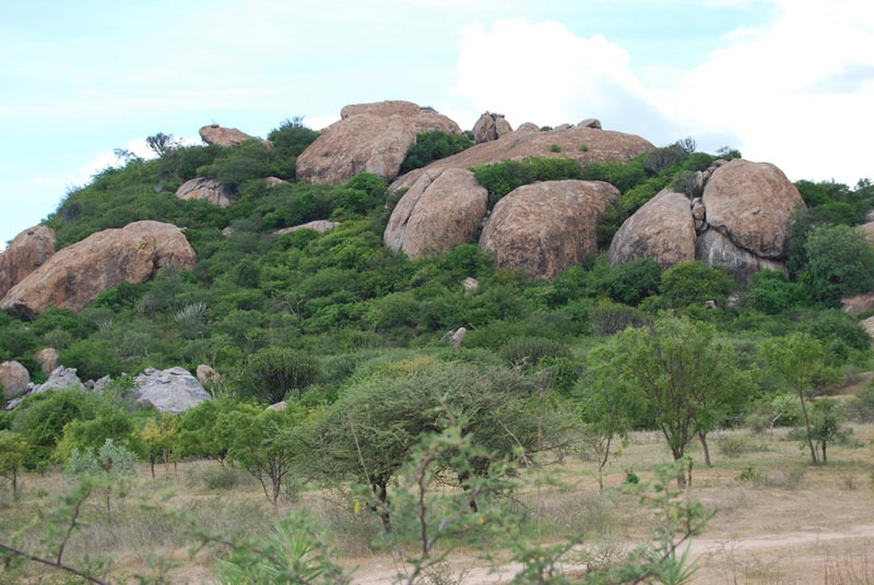 Tanzania Rocks on a Hill