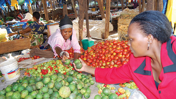 Tanzania Woman Buying Produce
