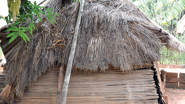 Togo Small Home with a Thatch Roof