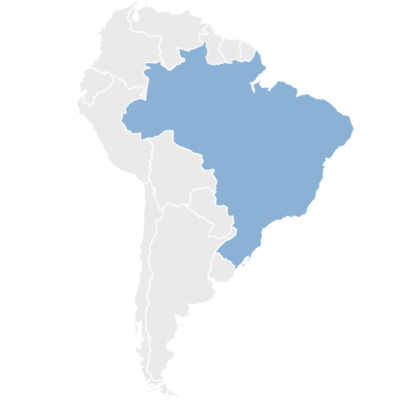 Gray map of South America with Brazil in blue