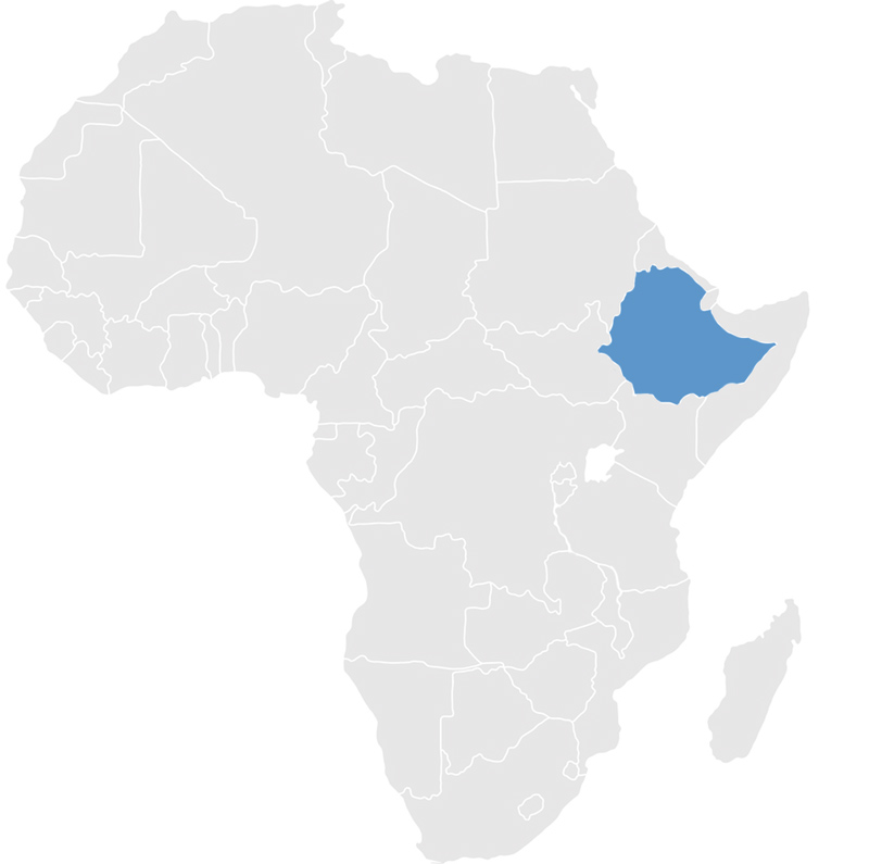 Gray map of Africa with Ethiopia in blue