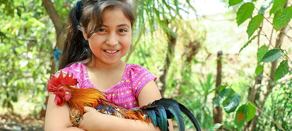 A girl holds a rooster and smiles