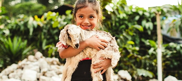 A little girl holding a goat