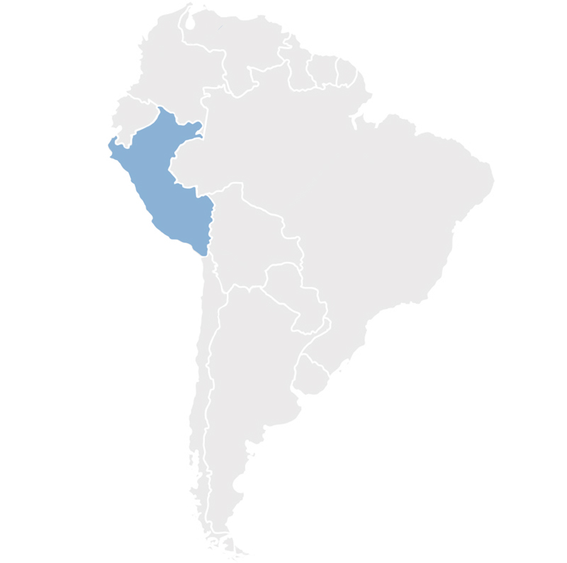 Gray map of South America with Peru in blue